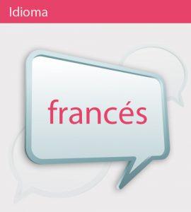 El idioma en Francia