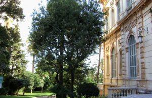 Museos en Niza