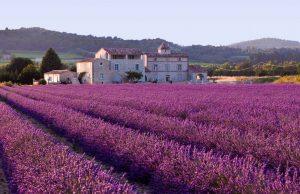 Las fiestas y tradiciones que nunca olvidarás de Francia